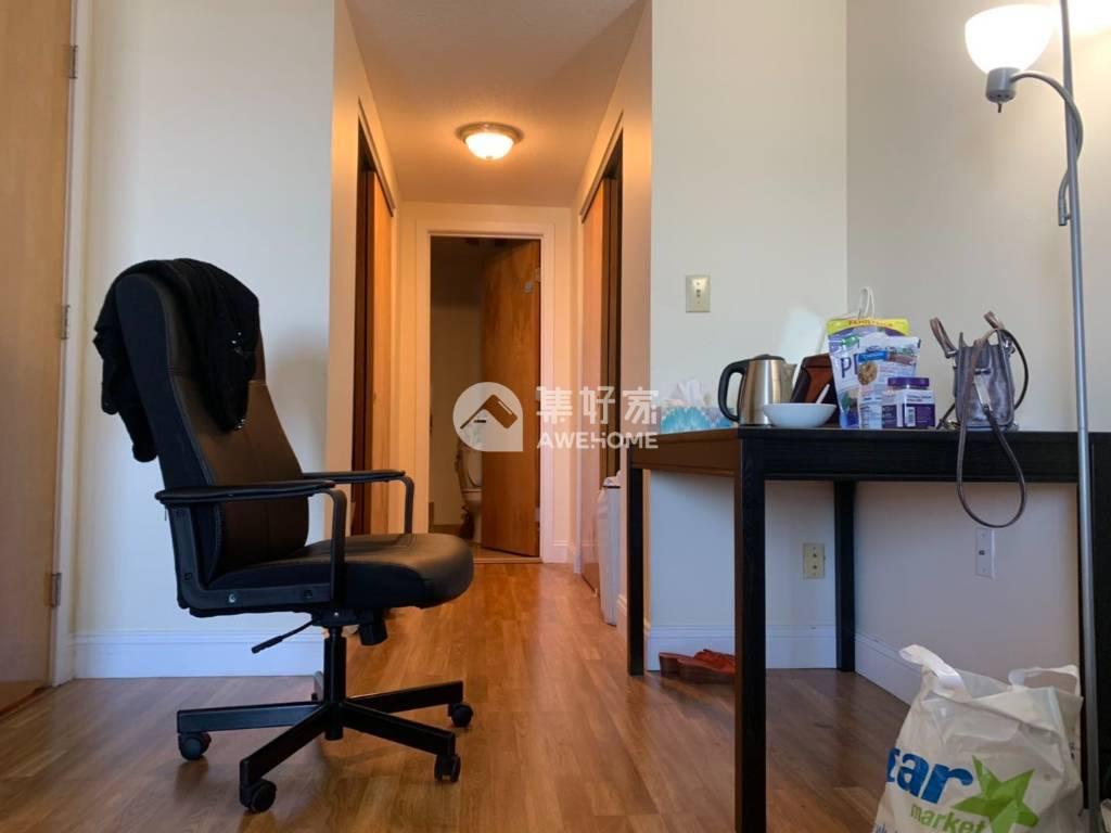 波士顿,BU附近 高级公寓主卧带独立卫浴转租
